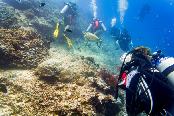 Safety Reminders for Expert Scuba Divers