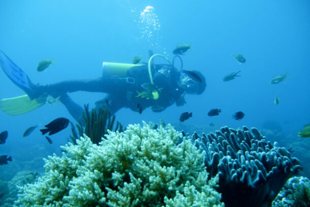 Scuba Diving for Non-swimmers