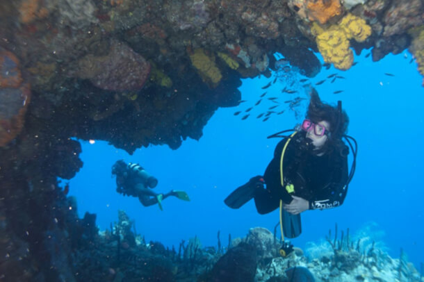 Every Scuba Diving Course You Need to Try